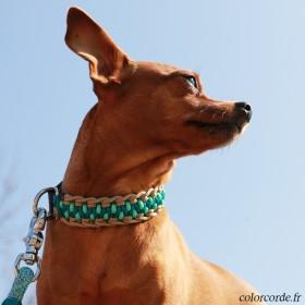 Collier personnalisé chien